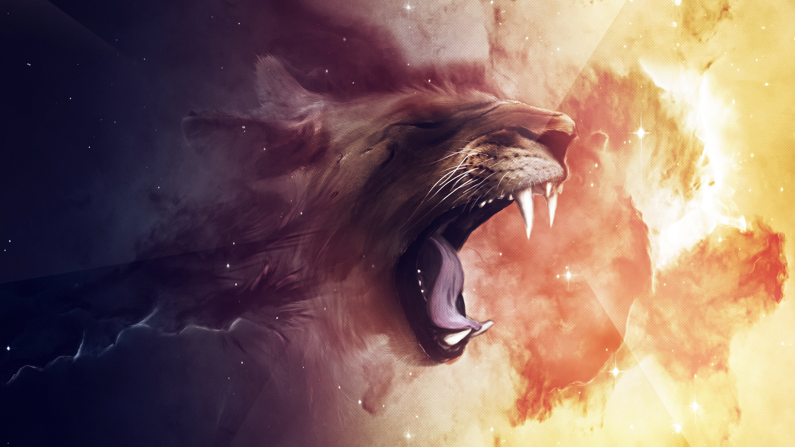 Free Lion high quality background ID:255165 for hd 2560x1440 computer