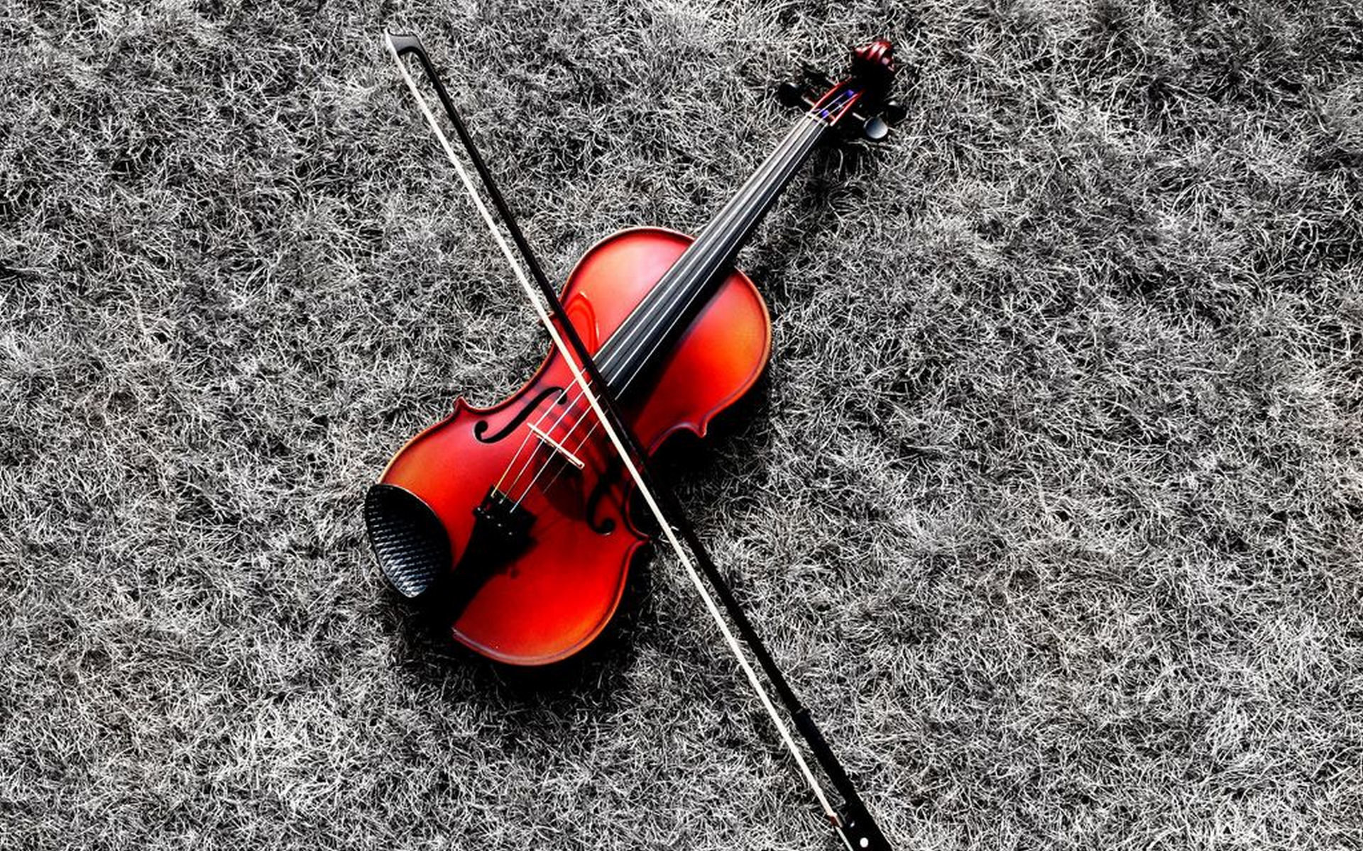High resolution Violin hd 1920x1200 background ID:53592 for computer