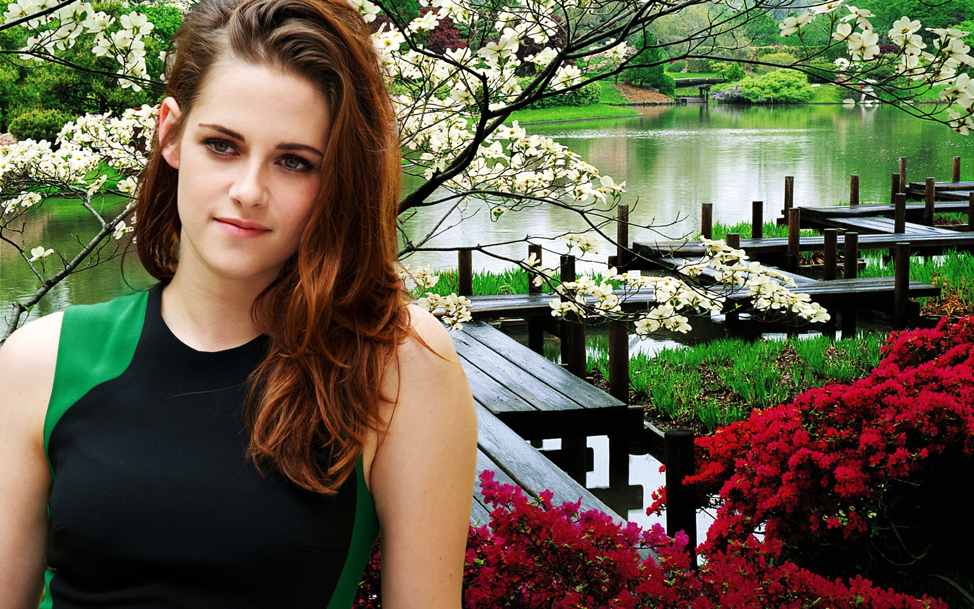Download hd 1920x1200 Kristen Stewart PC background ID:114609 for free
