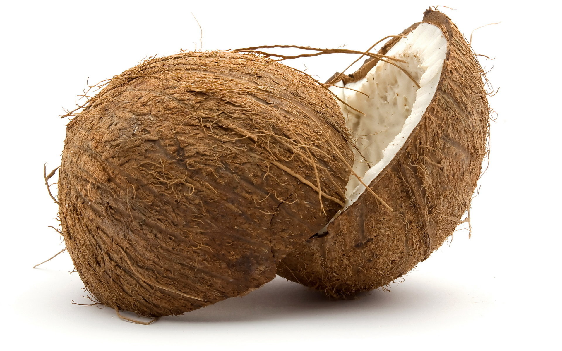 Free Coconut high quality background ID:402974 for hd 1920x1200 desktop