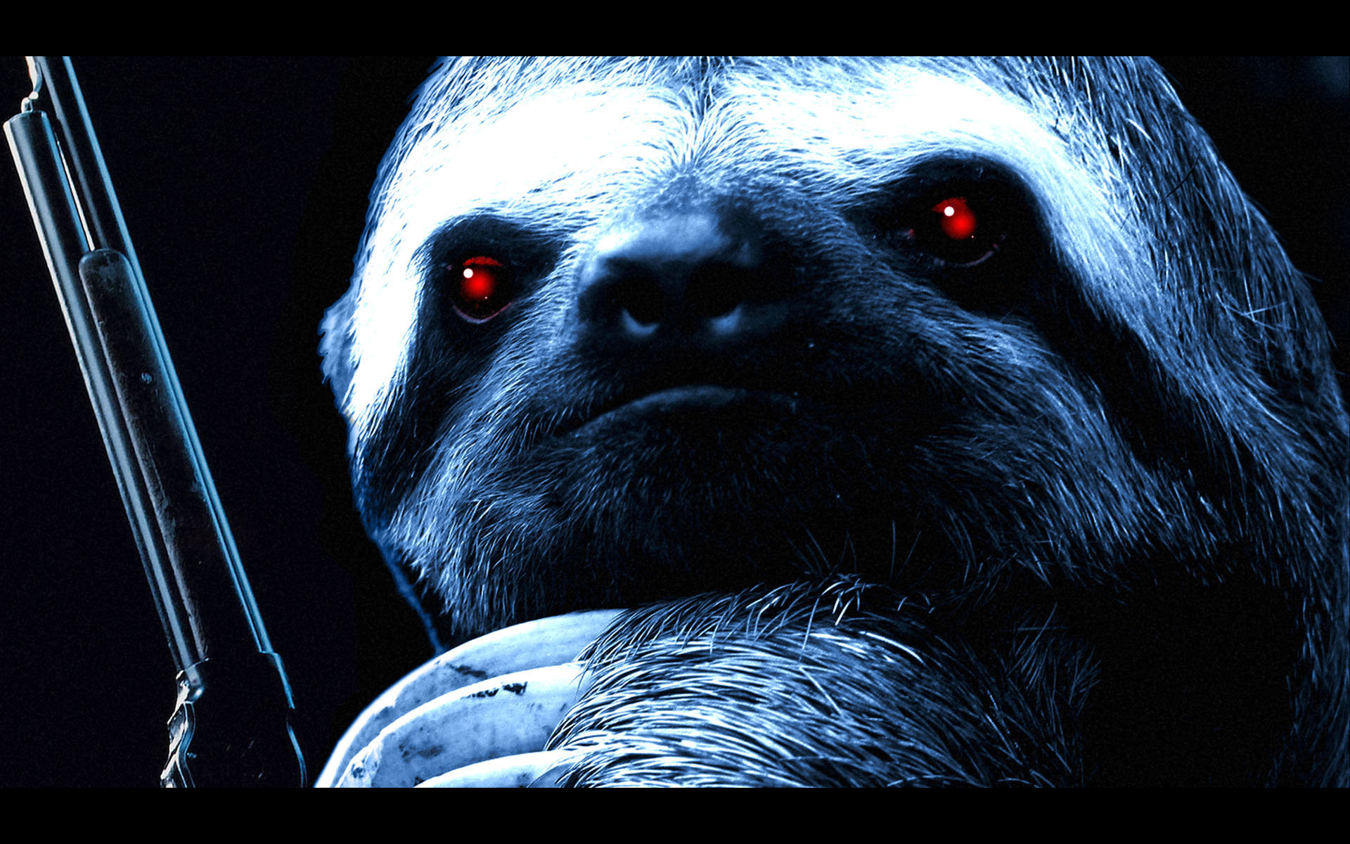 Best Sloth background ID:68363 for High Resolution hd 1920x1200 PC