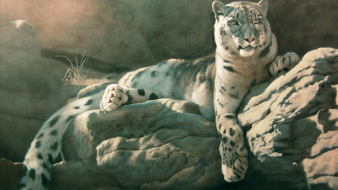 Download 1366x768 laptop Snow Leopard PC background ID:34430 for free