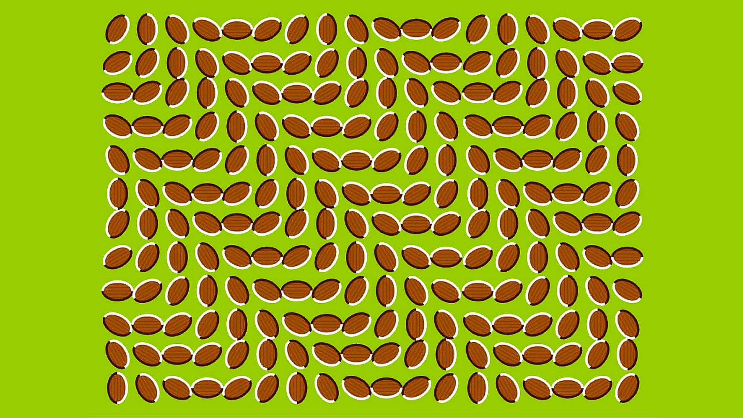 Free download Illusion wallpaper ID:94949 hd 2560x1440 for desktop