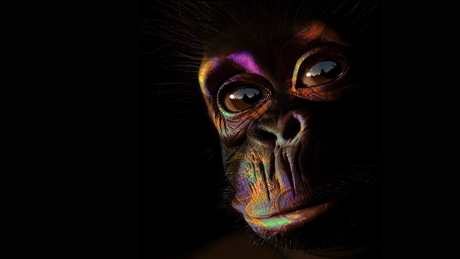 Awesome Monkey free background ID:128004 for hd 1600x900 PC