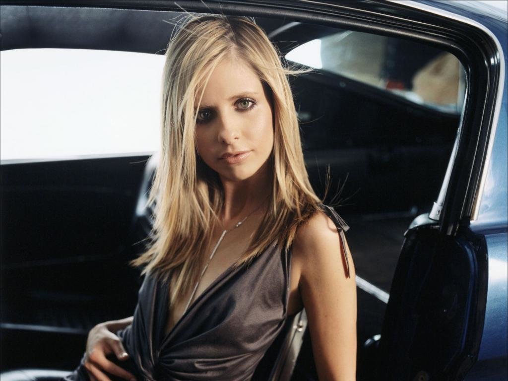Download hd 1024x768 Sarah Michelle Gellar computer background ID:187849 for free