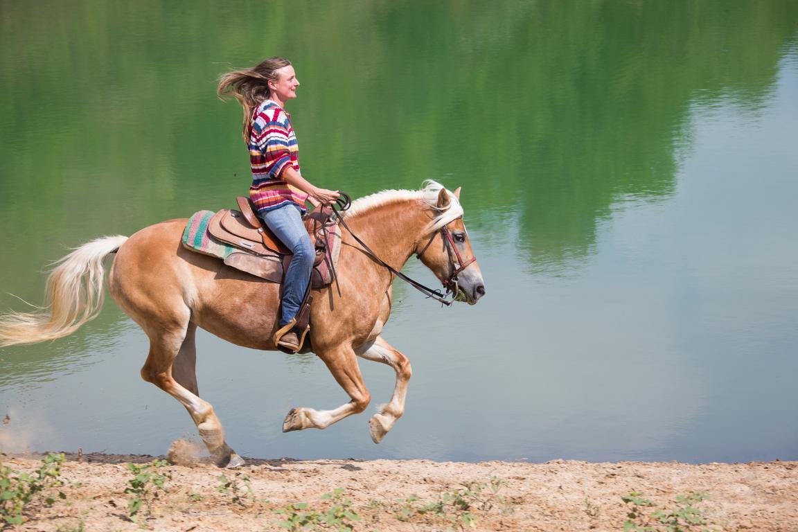 Awesome Horse Riding free wallpaper ID:301716 for hd 1152x768 computer