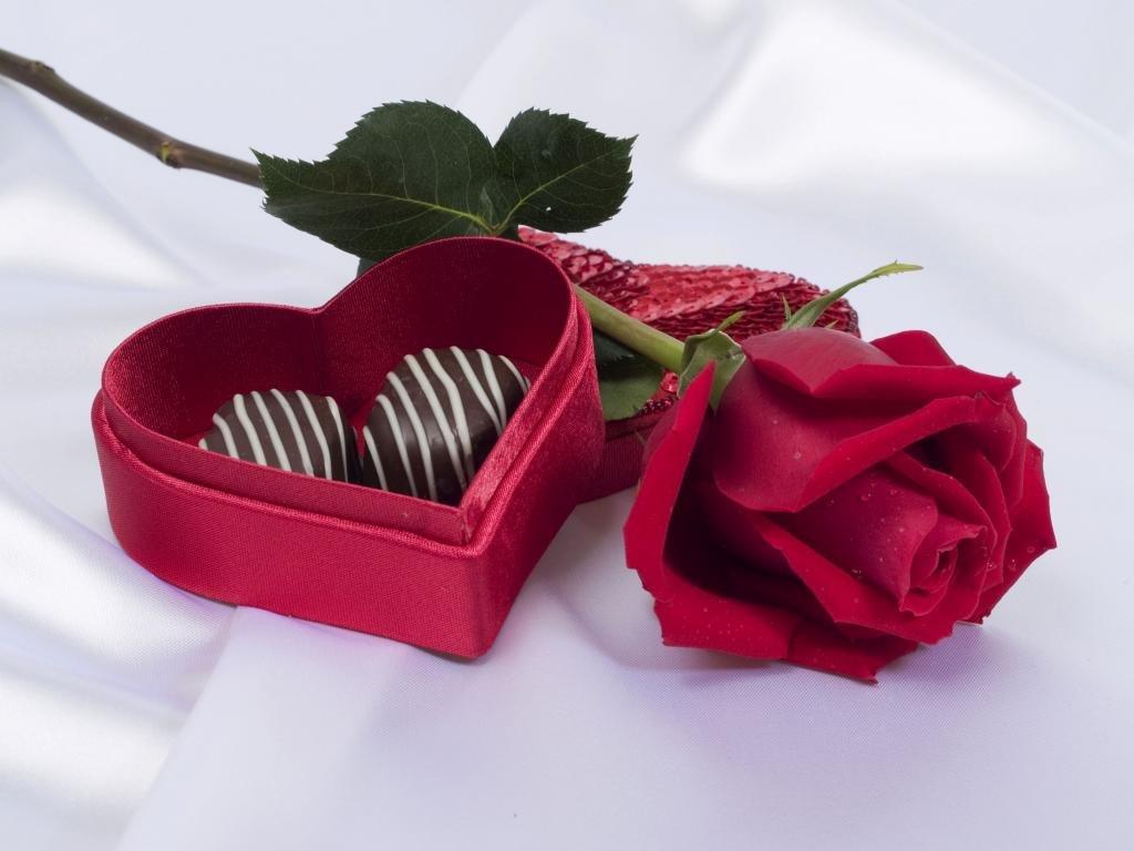 download hd 1024x768 valentine's day desktop wallpaper id:373205 for
