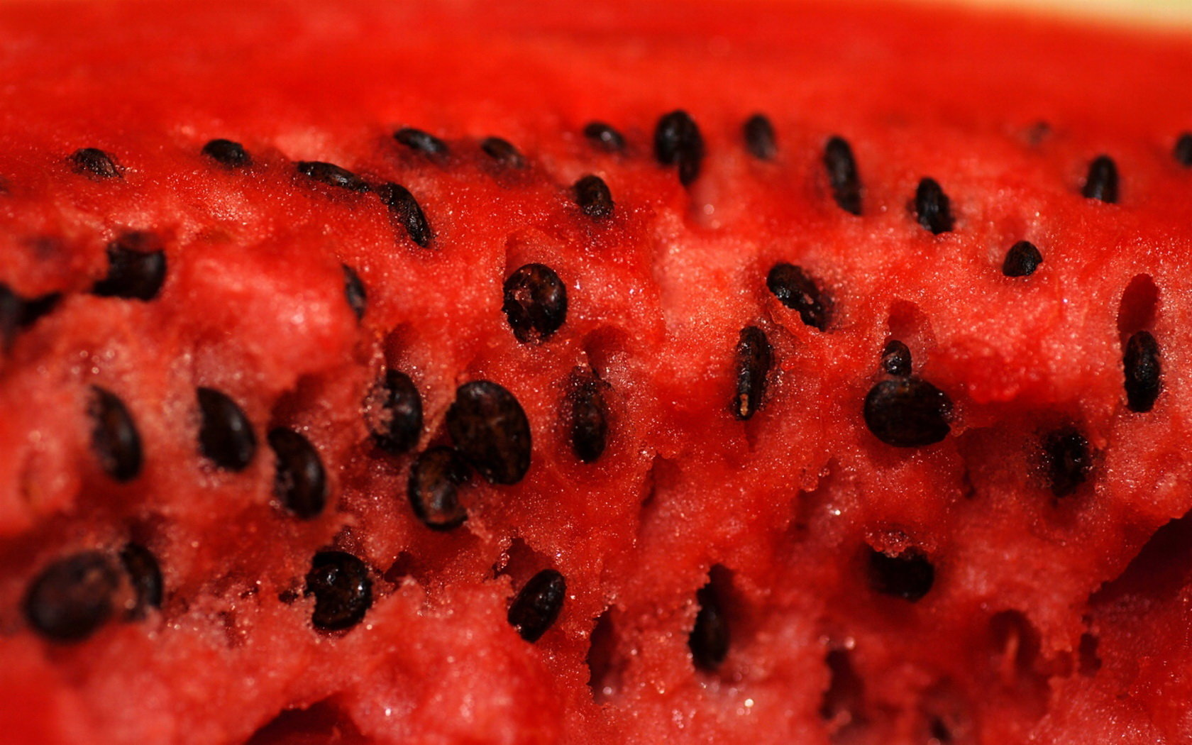 Awesome Watermelon free wallpaper ID:162652 for hd 1680x1050 desktop