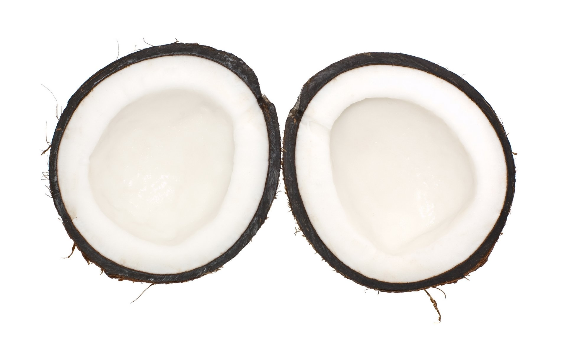 Free Coconut high quality background ID:402965 for hd 1920x1200 PC