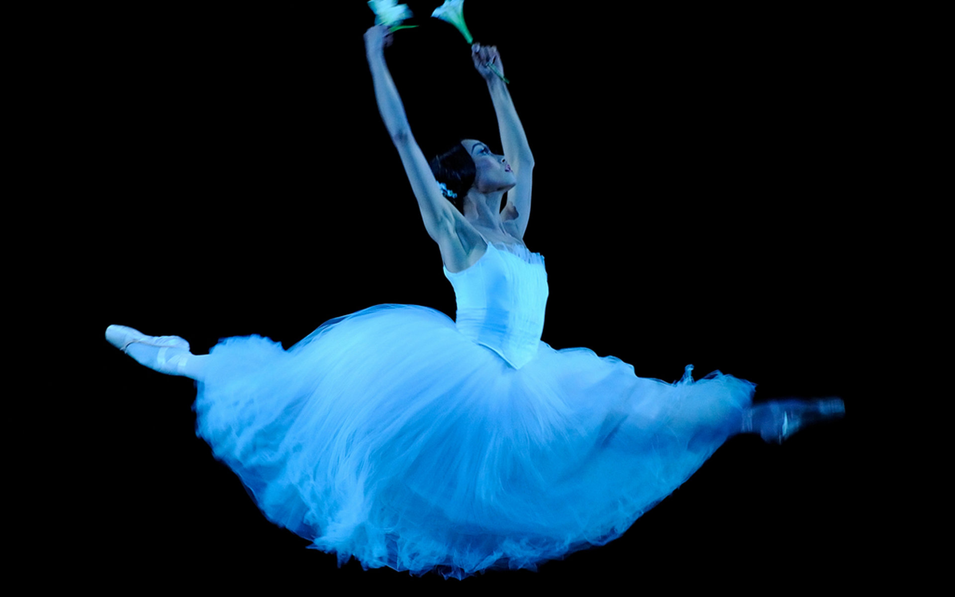 High Resolution Ballet Hd 1920x1200 Wallpaper Id 445220 For Desktop
