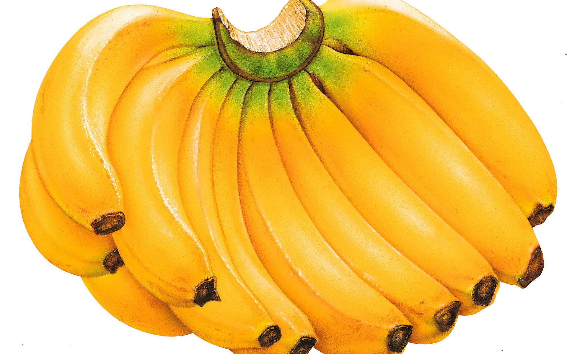High resolution Banana hd 1920x1200 wallpaper ID:463180 for PC