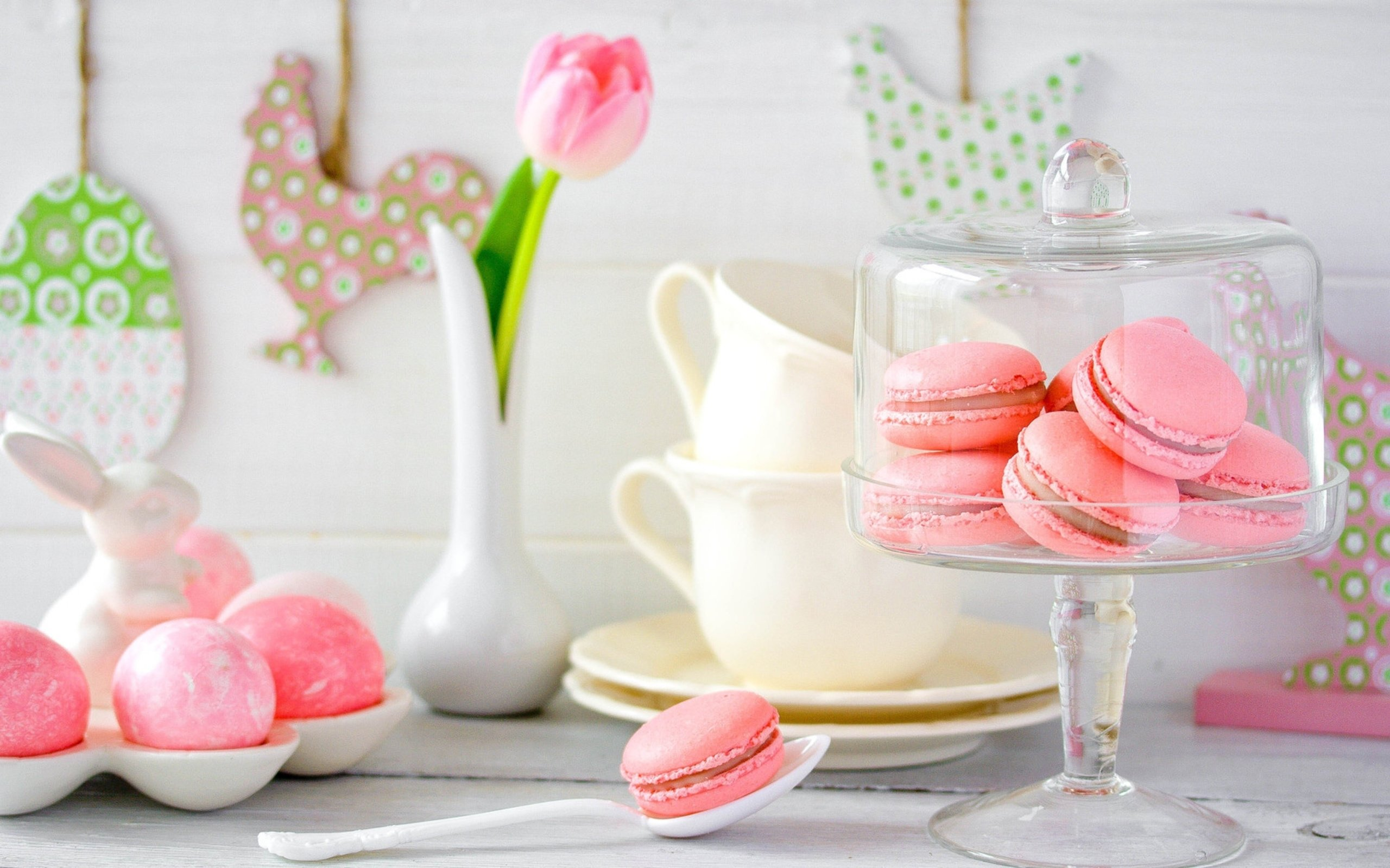 Free download Macaron background ID:420967 hd 2560x1600 for PC