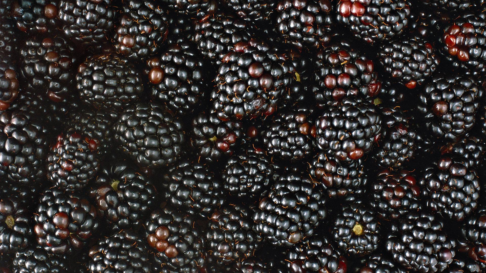 Best Blackberry Wallpaper ID387395 For High Resolution Full Hd 1080p Computer