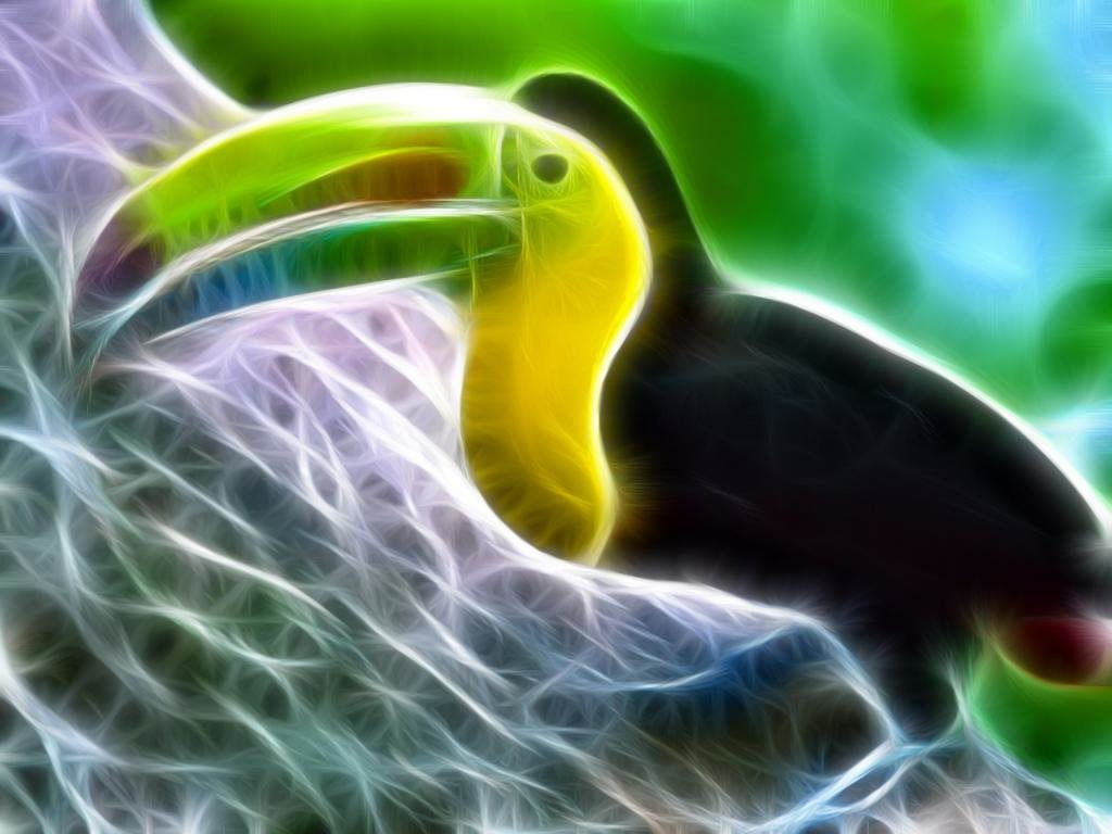 Download hd 1024x768 Toucan PC background ID:57296 for free