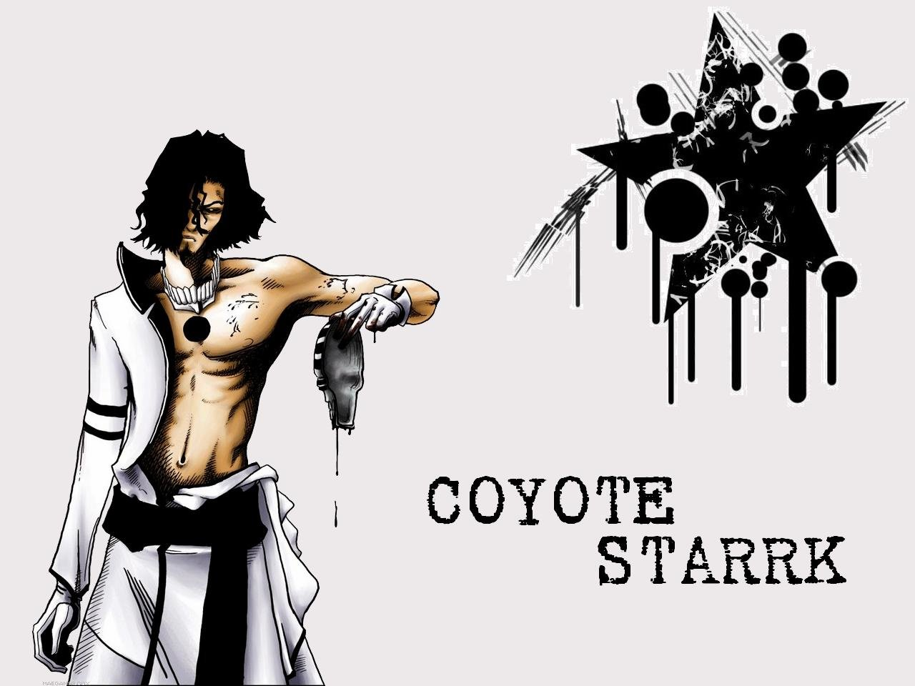Download hd 1280x960 Coyote Starrk computer background ID:417719 for free
