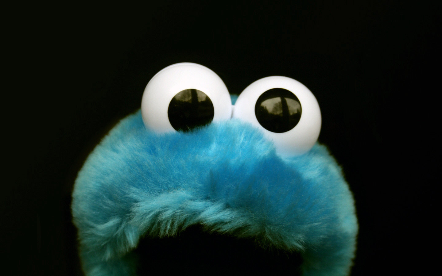 Best Cookie Monster wallpaper ID:374502 for High Resolution hd 1440x900 desktop
