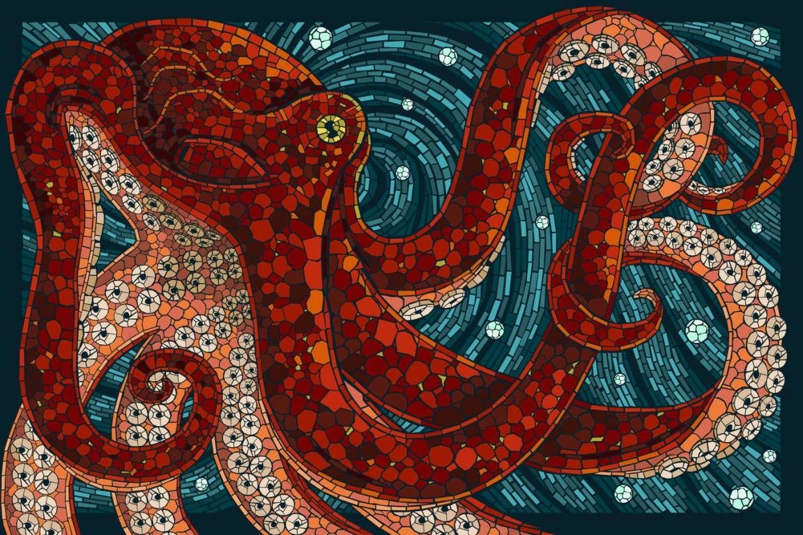 Best Octopus background ID:350563 for High Resolution hd 1152x768 desktop
