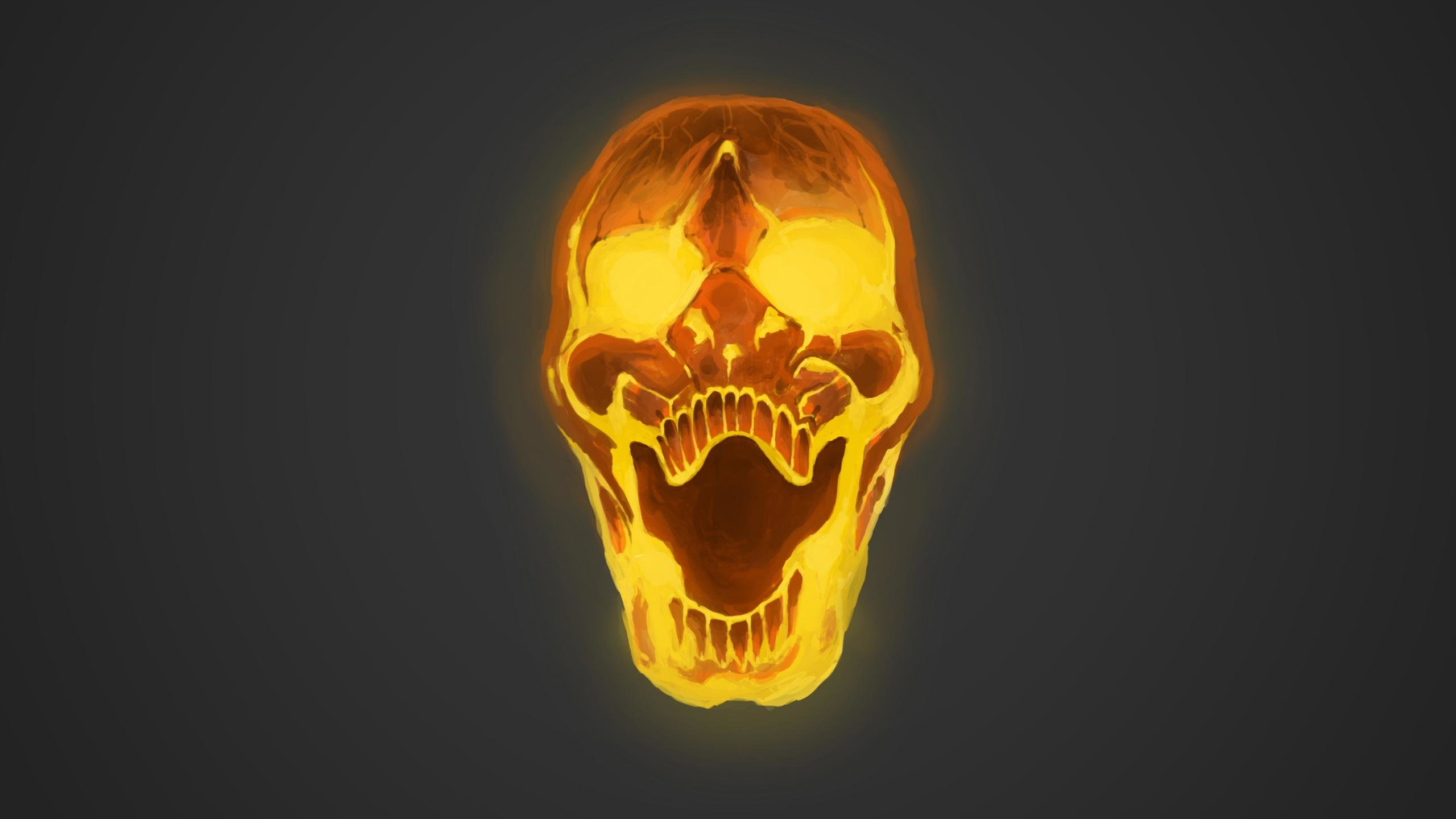 Best Skull wallpaper ID:320952 for High Resolution hd 2560x1440 computer