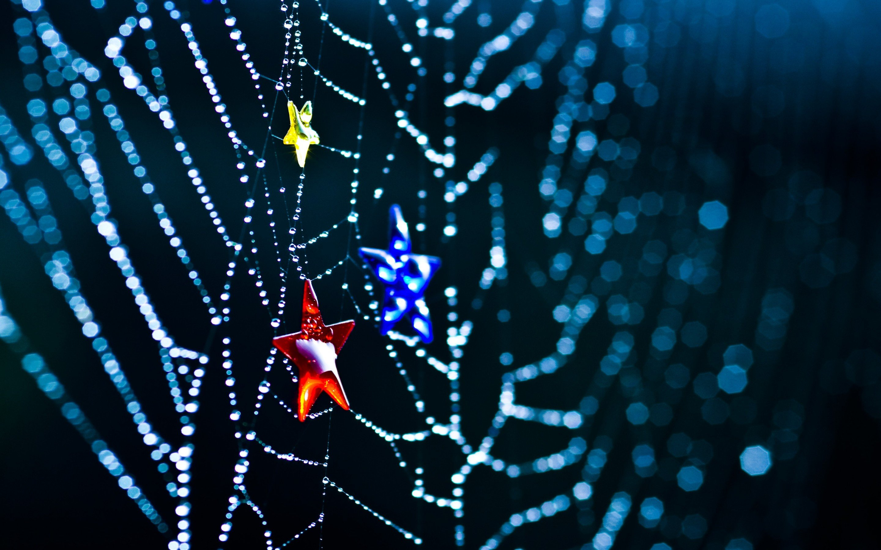 Download hd 2880x1800 Spider Web PC background ID:184724 for free