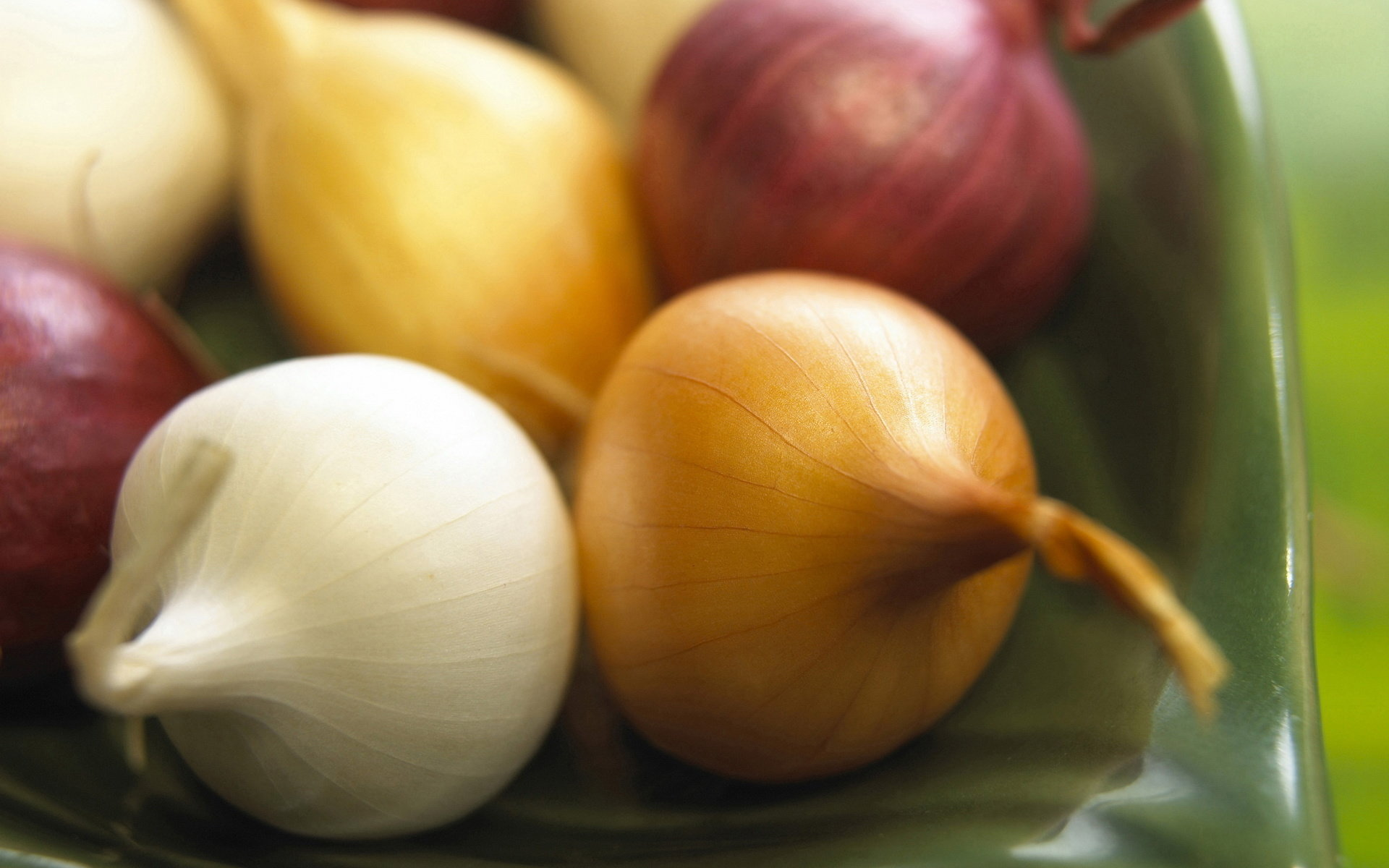 Free Onion high quality background ID:457701 for hd 1920x1200 PC