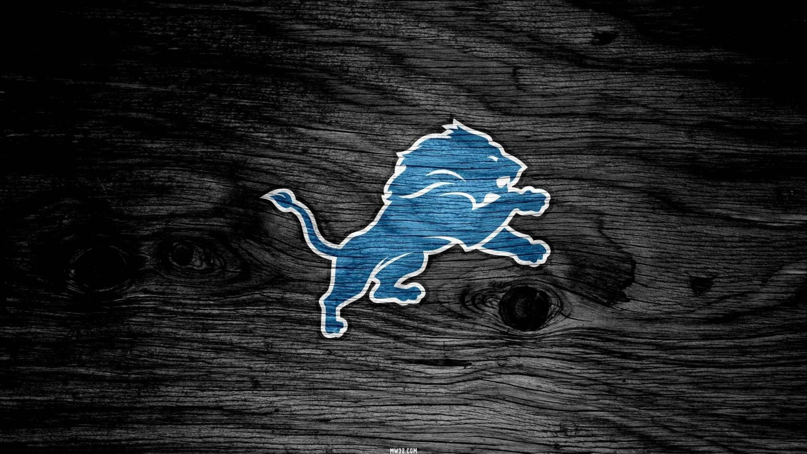 Awesome Detroit Lions free background ID:391839 for hd 1600x900 computer