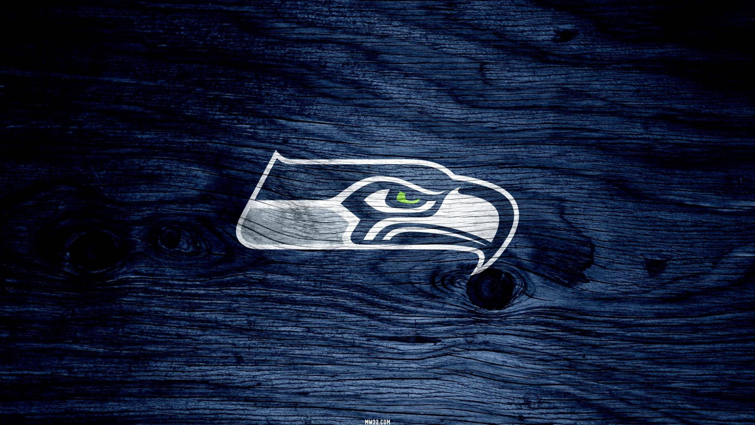 Download hd 2560x1440 Seattle Seahawks computer background ID:347909 for free