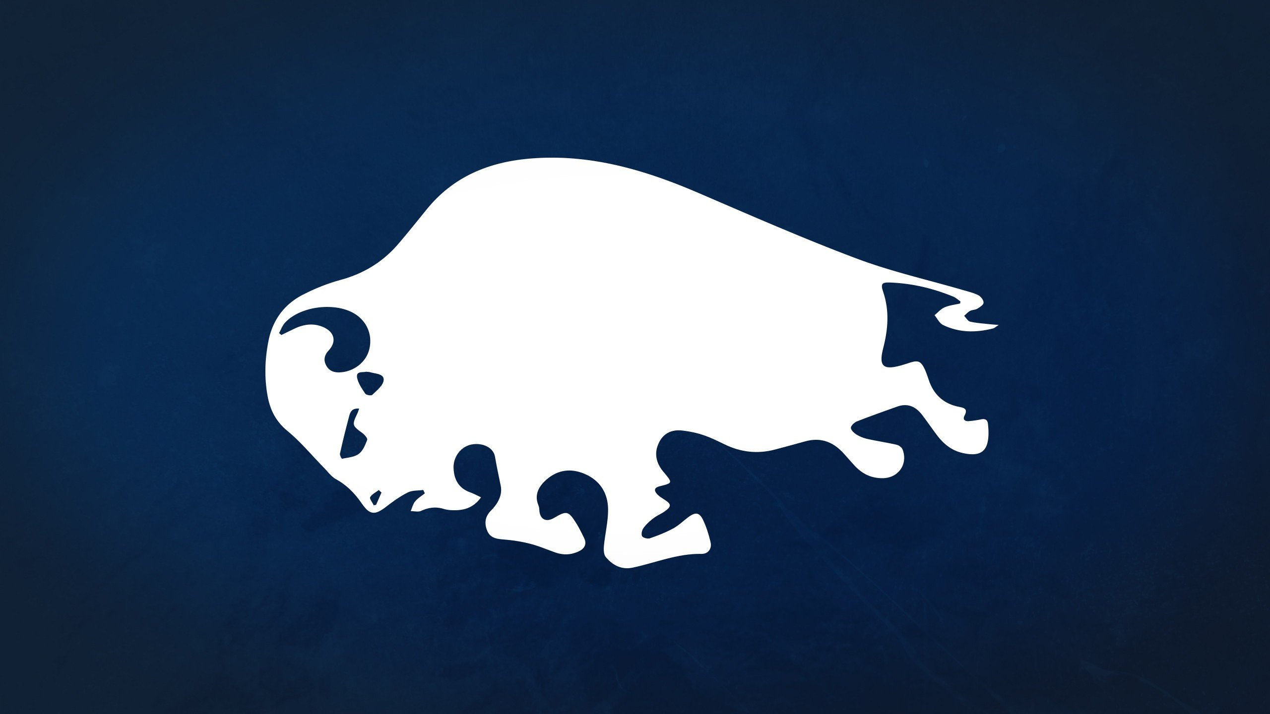 Awesome Buffalo Sabres free background ID:205942 for hd 2560x1440 computer