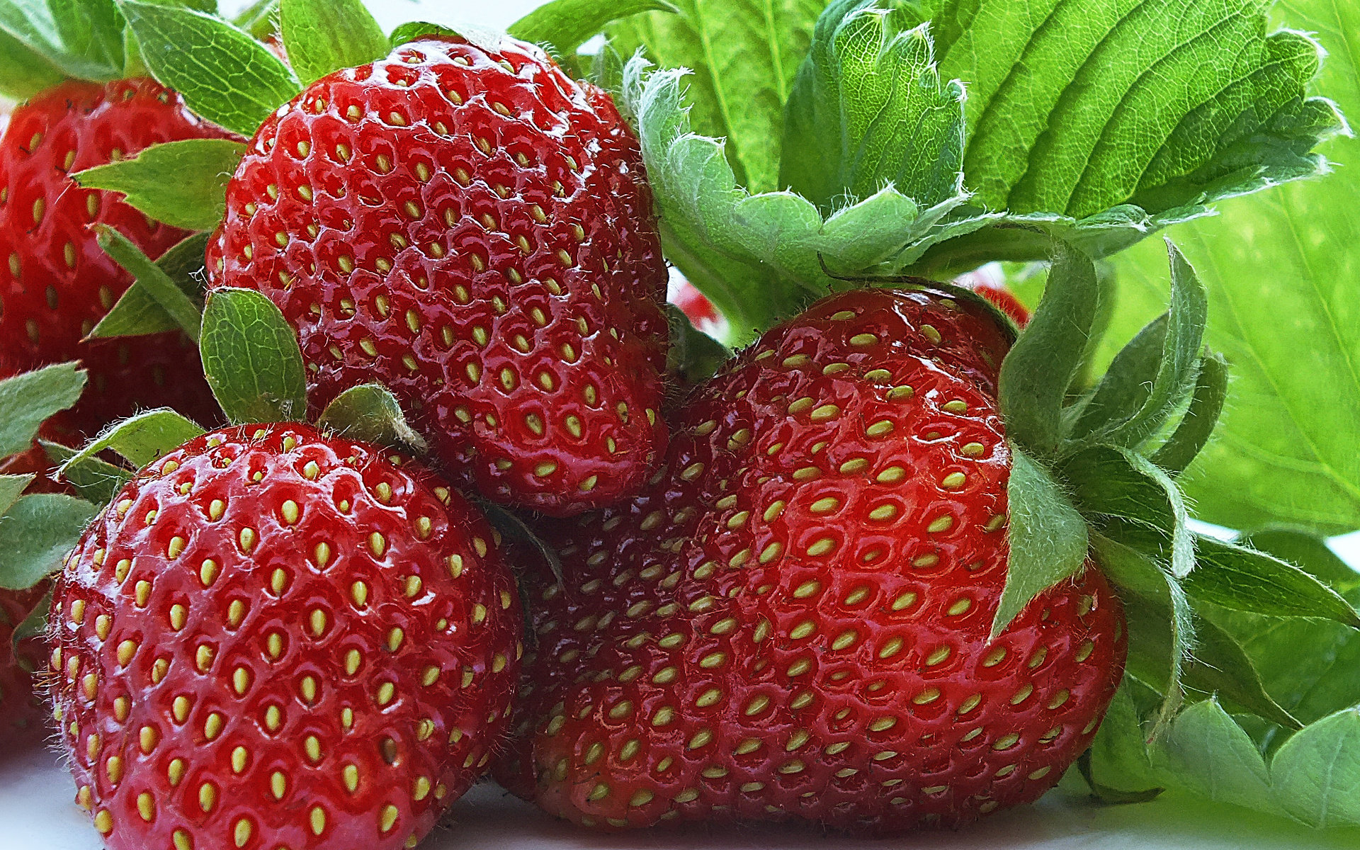 Awesome Strawberry free background ID:90716 for hd 1920x1200 desktop