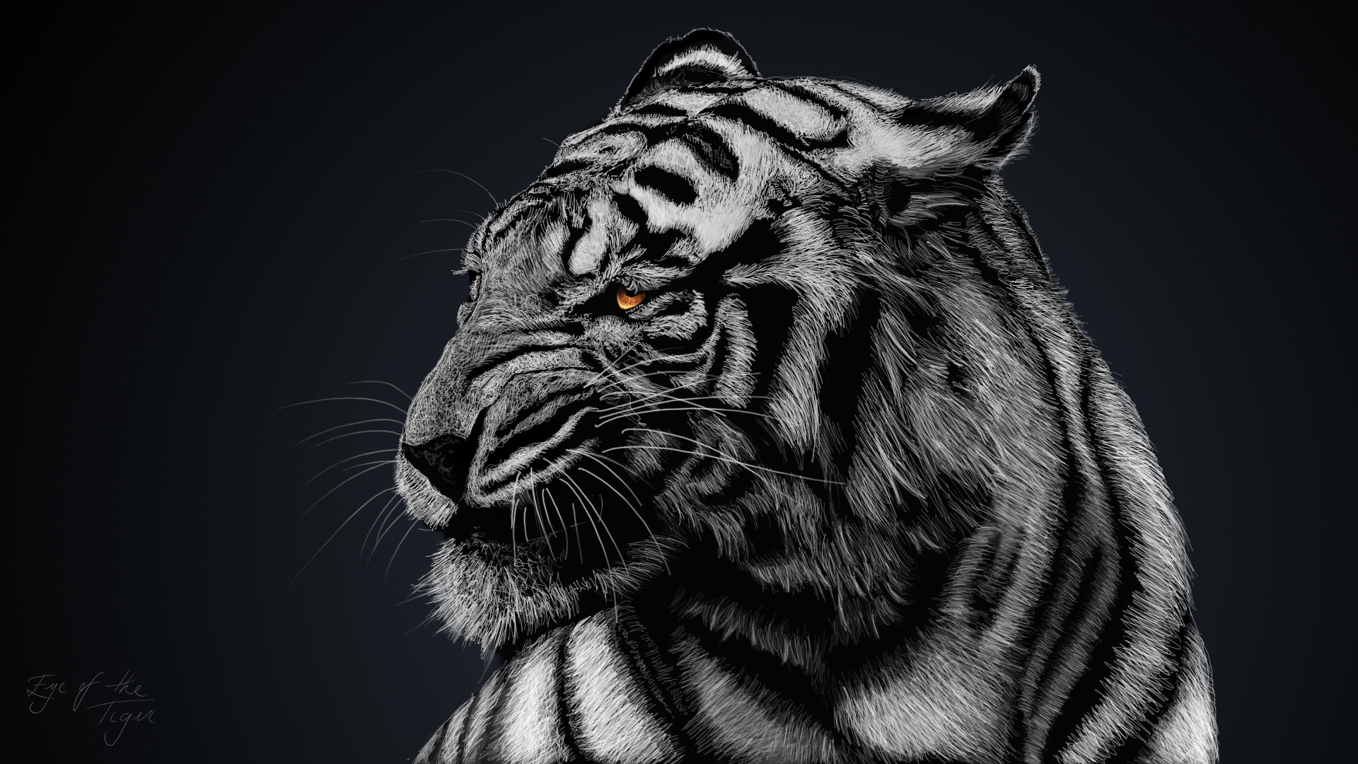 Free White Tiger high quality background ID:174835 for full hd PC