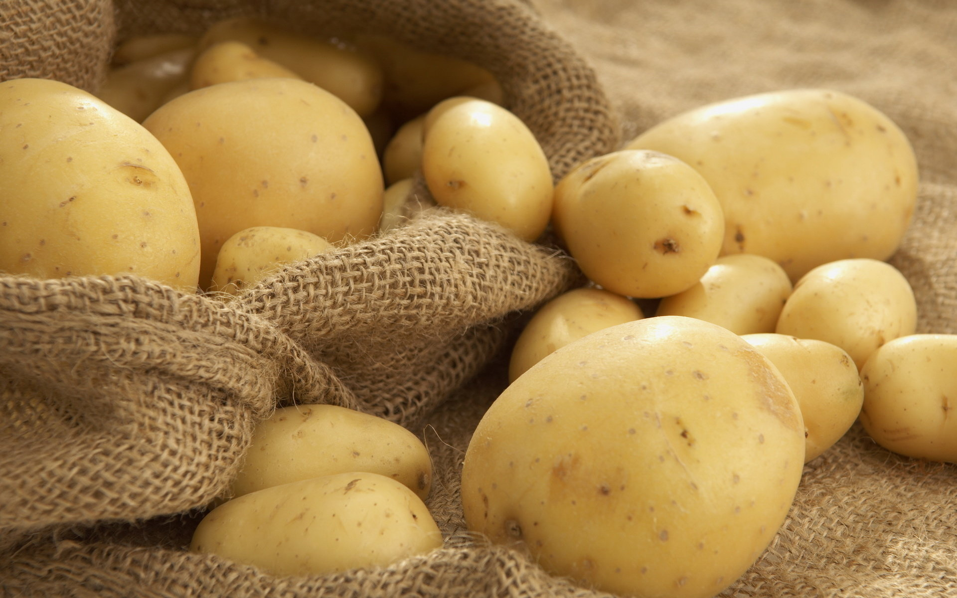 Free download Potato wallpaper ID:315027 hd 1920x1200 for desktop