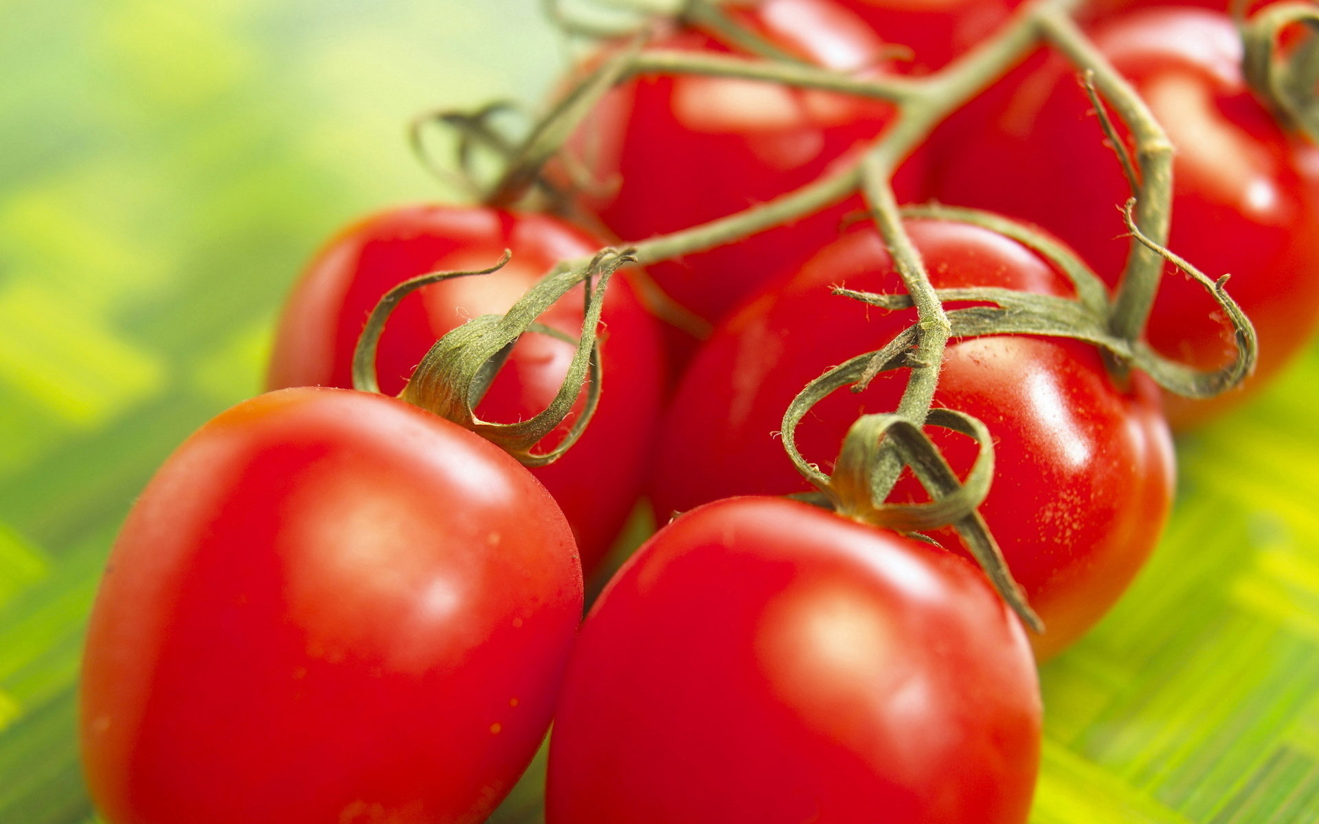 Free Tomato high quality wallpaper ID:95392 for hd 1920x1200 desktop