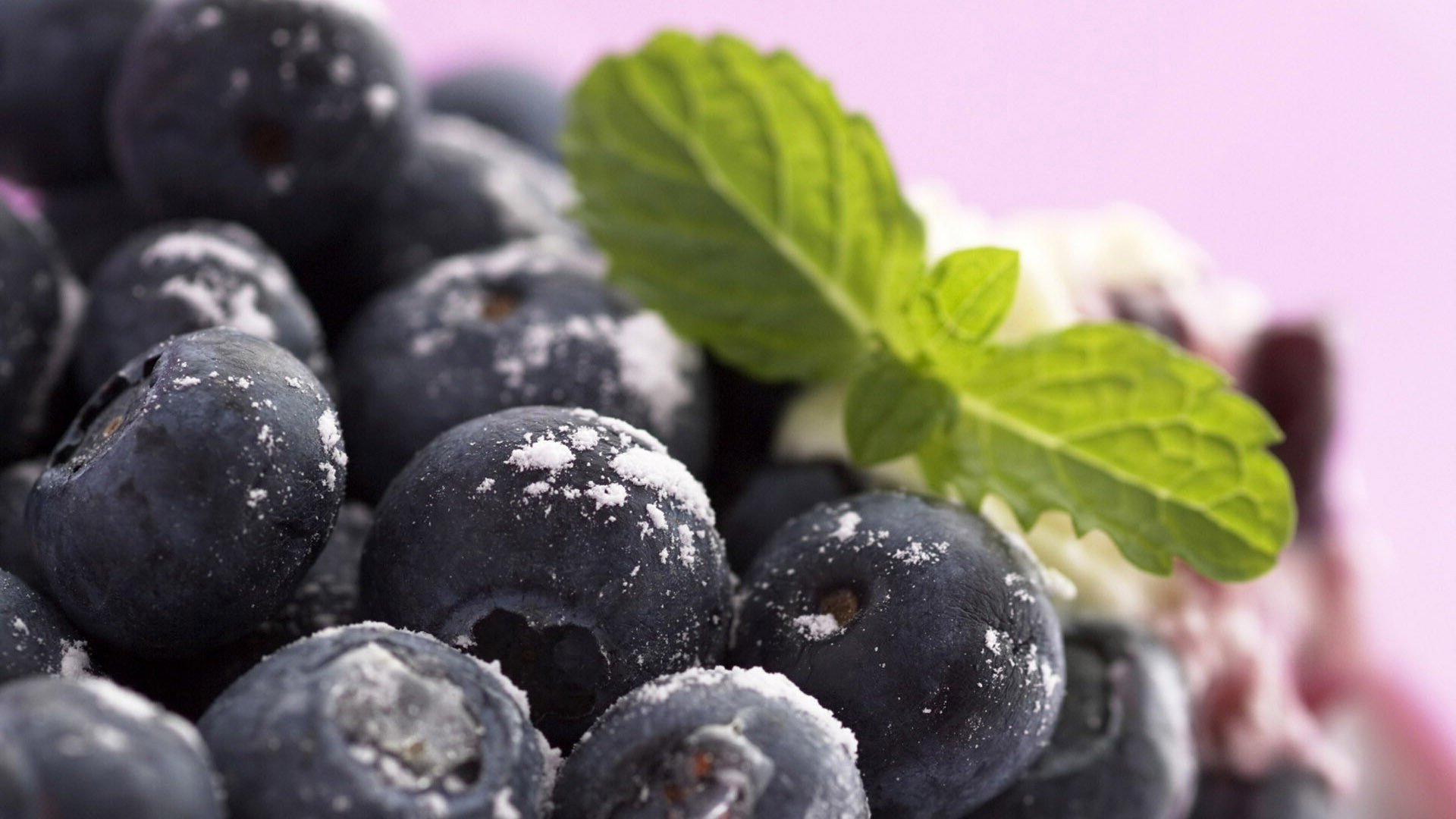 Awesome Blueberry free wallpaper ID:68983 for full hd 1920x1080 PC