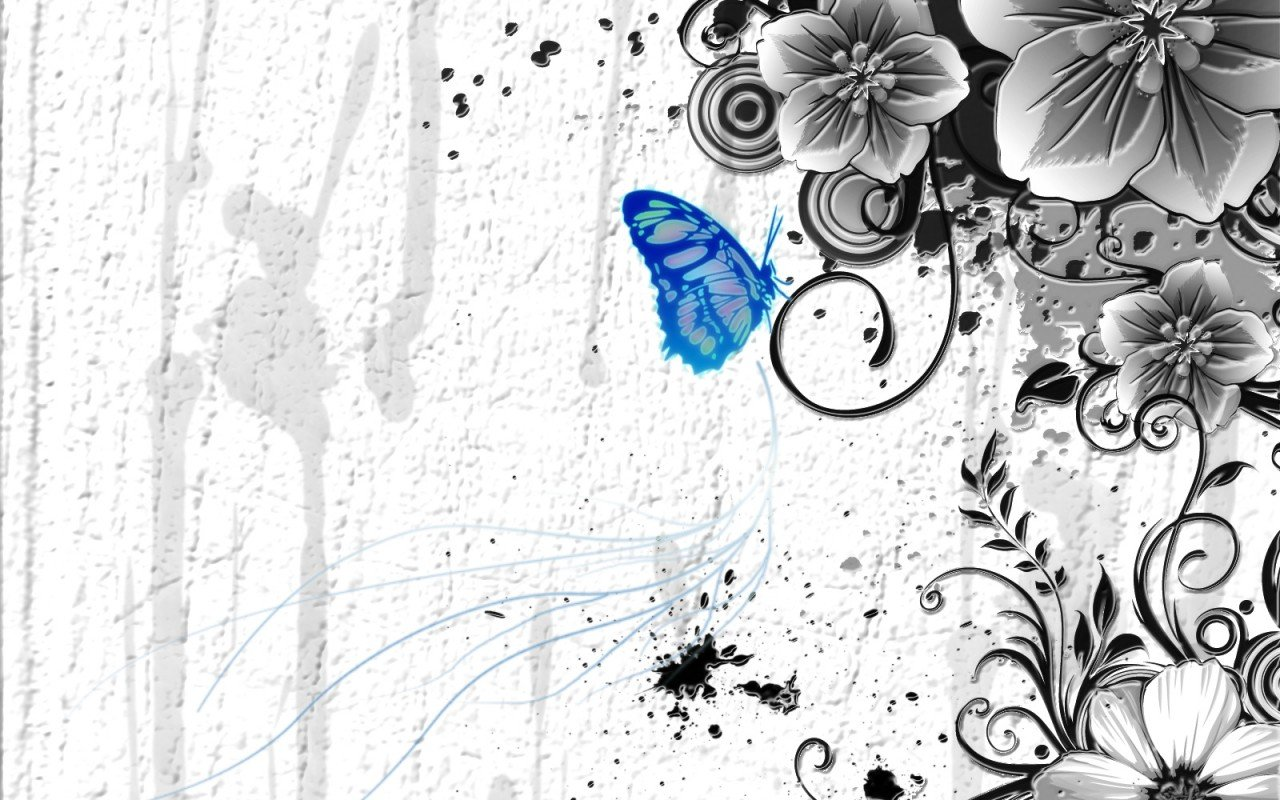Free Butterfly high quality background ID:167575 for hd 1280x800 computer