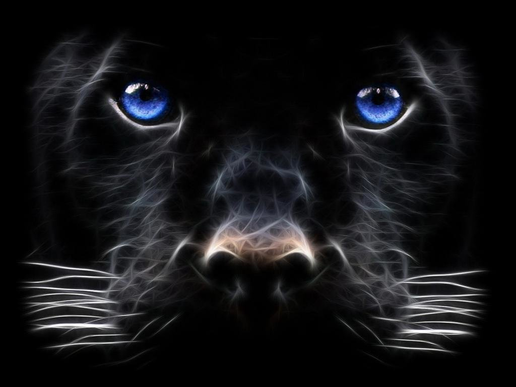 Awesome Panther free background ID:357204 for hd 1024x768 desktop