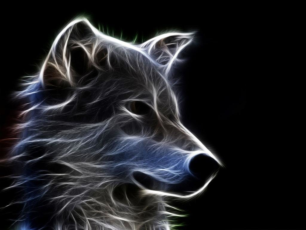 Download hd 1024x768 Wolf PC wallpaper ID:117612 for free