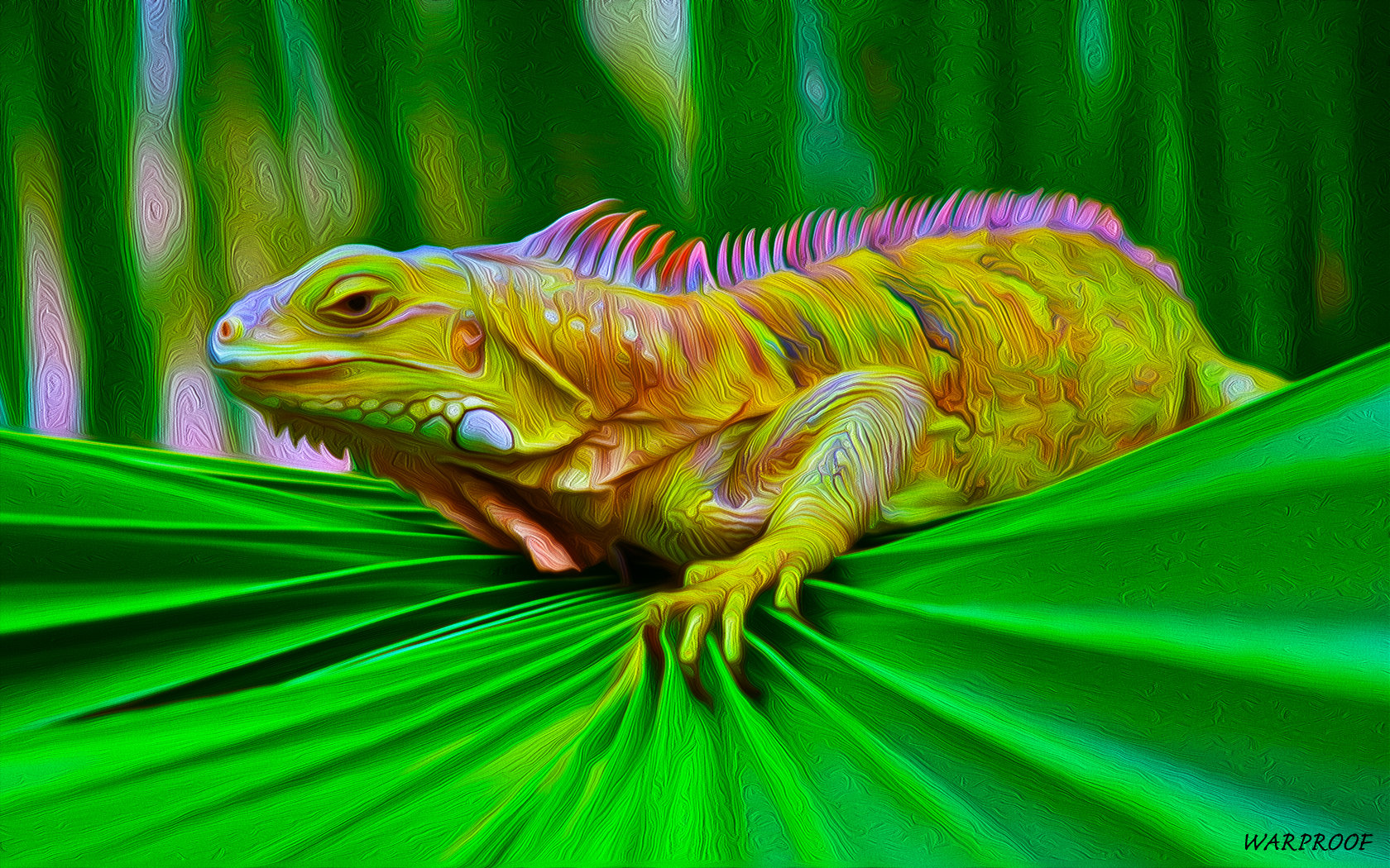 Free Iguana high quality wallpaper ID:380939 for hd 1680x1050 desktop