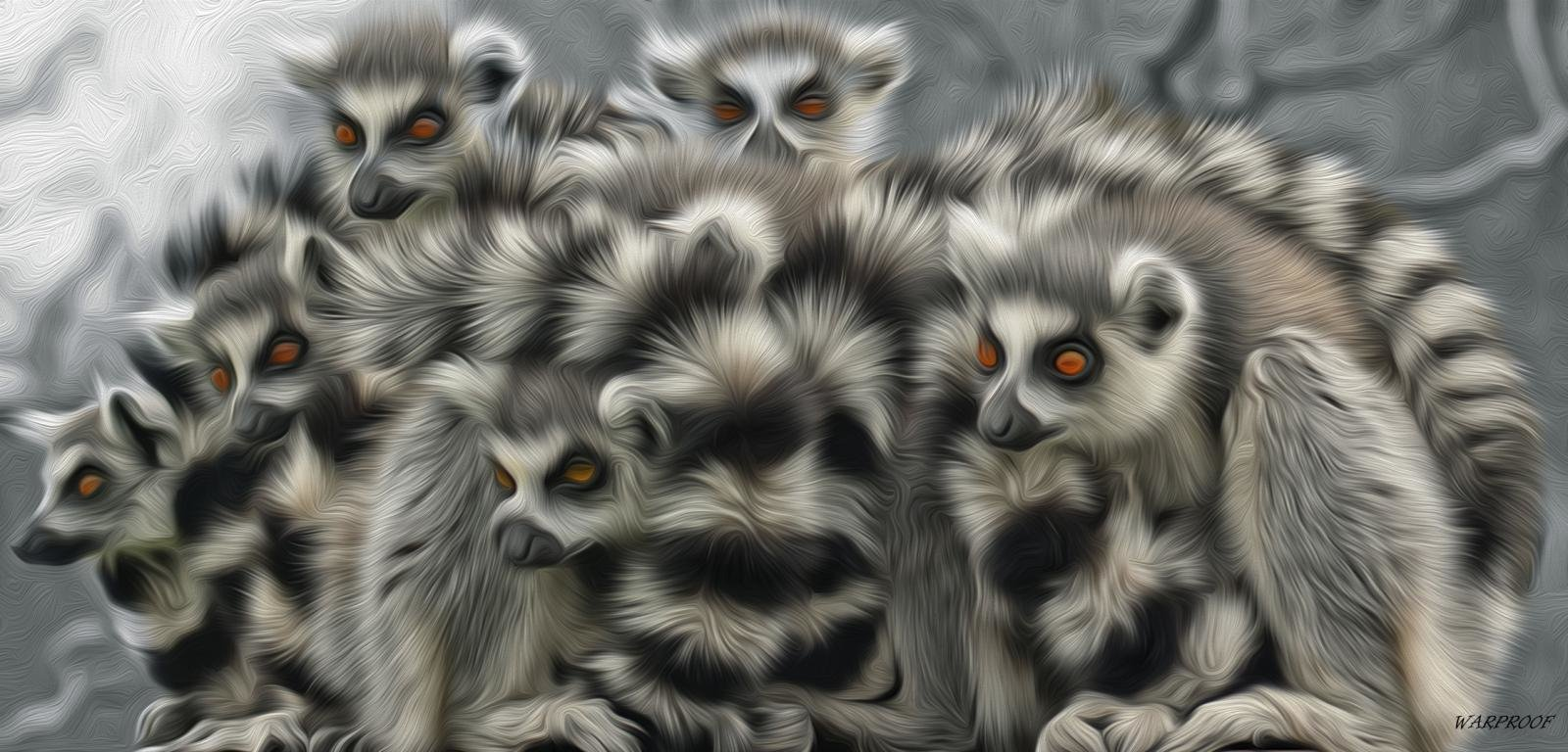 Awesome Lemur free background ID:53157 for hd 1600x768 desktop