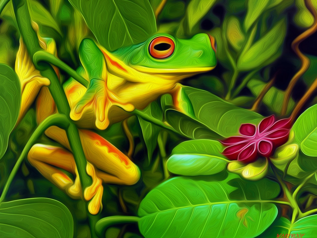 Free download Red Eyed Tree Frog wallpaper ID:20213 hd 1280x960 for desktop