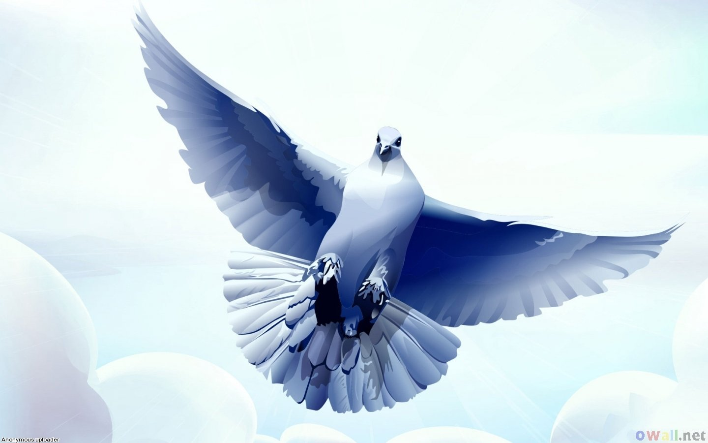 Best Dove background ID:357286 for High Resolution hd 1440x900 computer