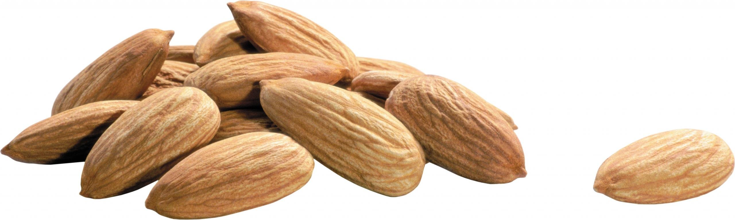 Free Almond high quality background ID:456081 for dual monitor 2560x768 desktop