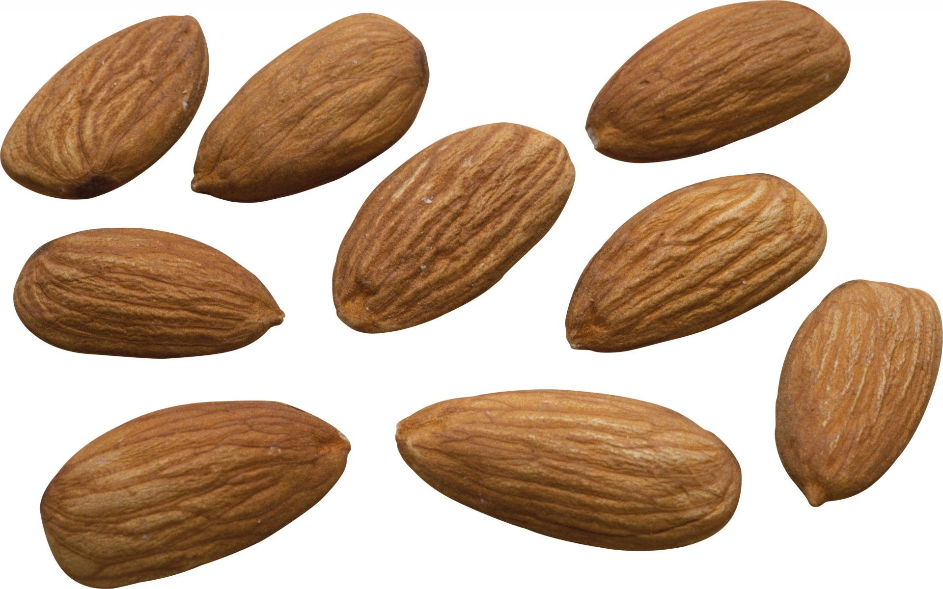 Best Almond wallpaper ID:456092 for High Resolution hd 1920x1200 computer