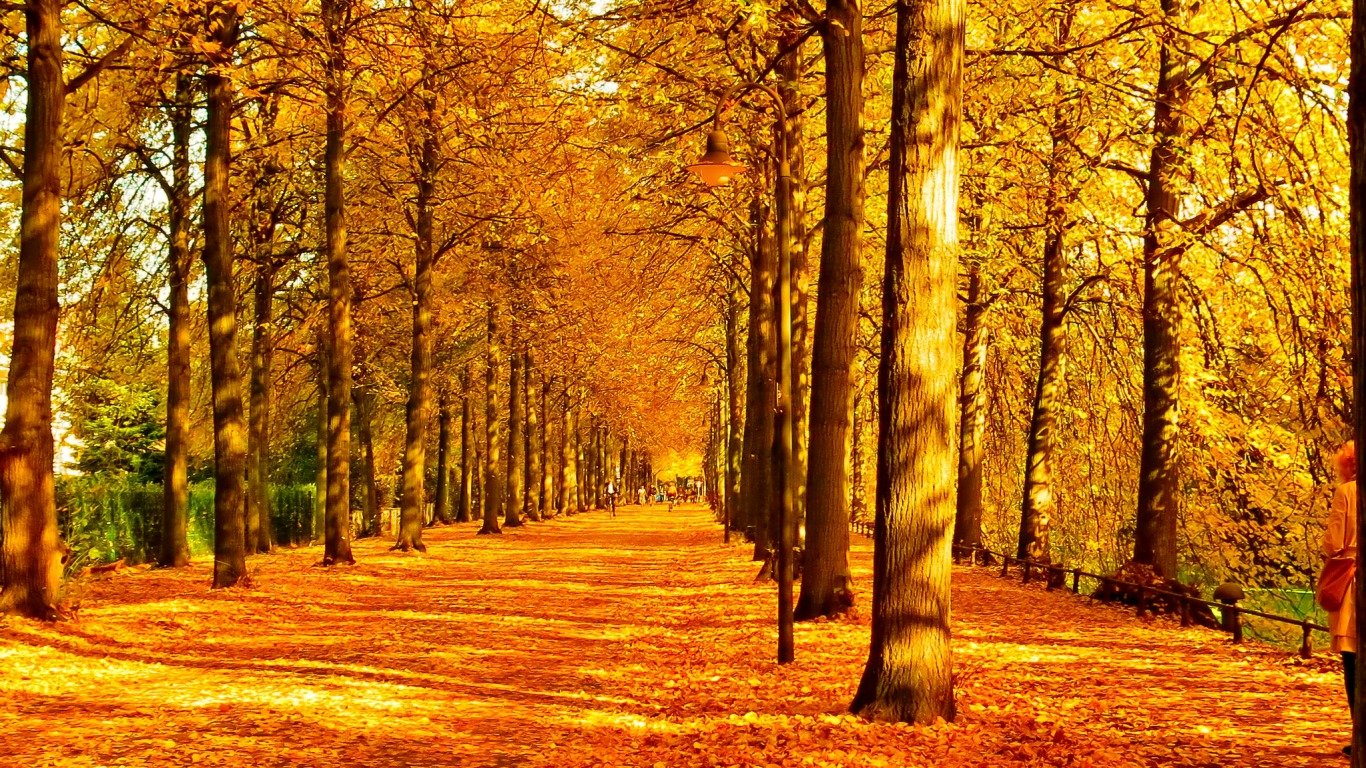 Awesome Fall free wallpaper ID:20759 for hd 1366x768 desktop