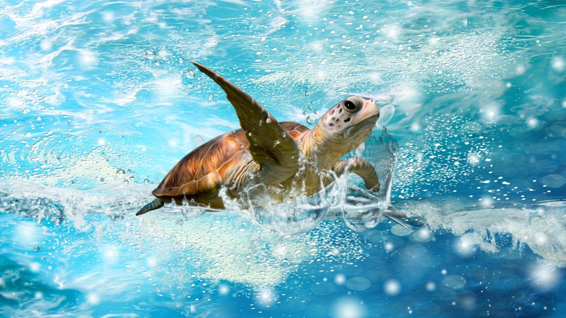 Awesome Sea Turtle free wallpaper ID:150748 for 1080p computer