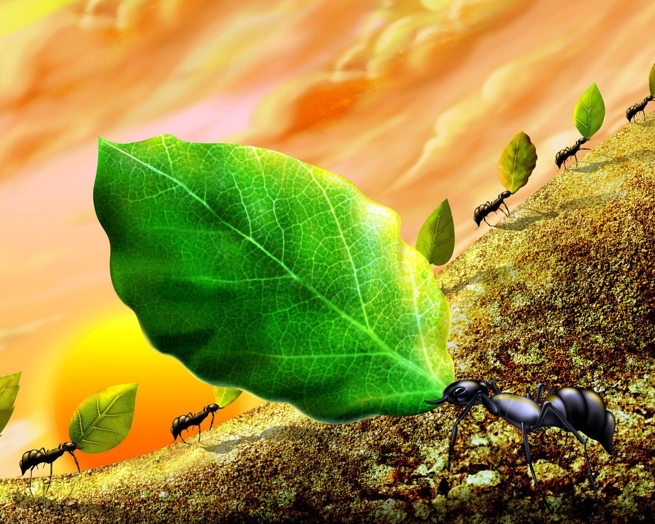 Best Ant wallpaper ID:401307 for High Resolution hd 1280x1024 desktop