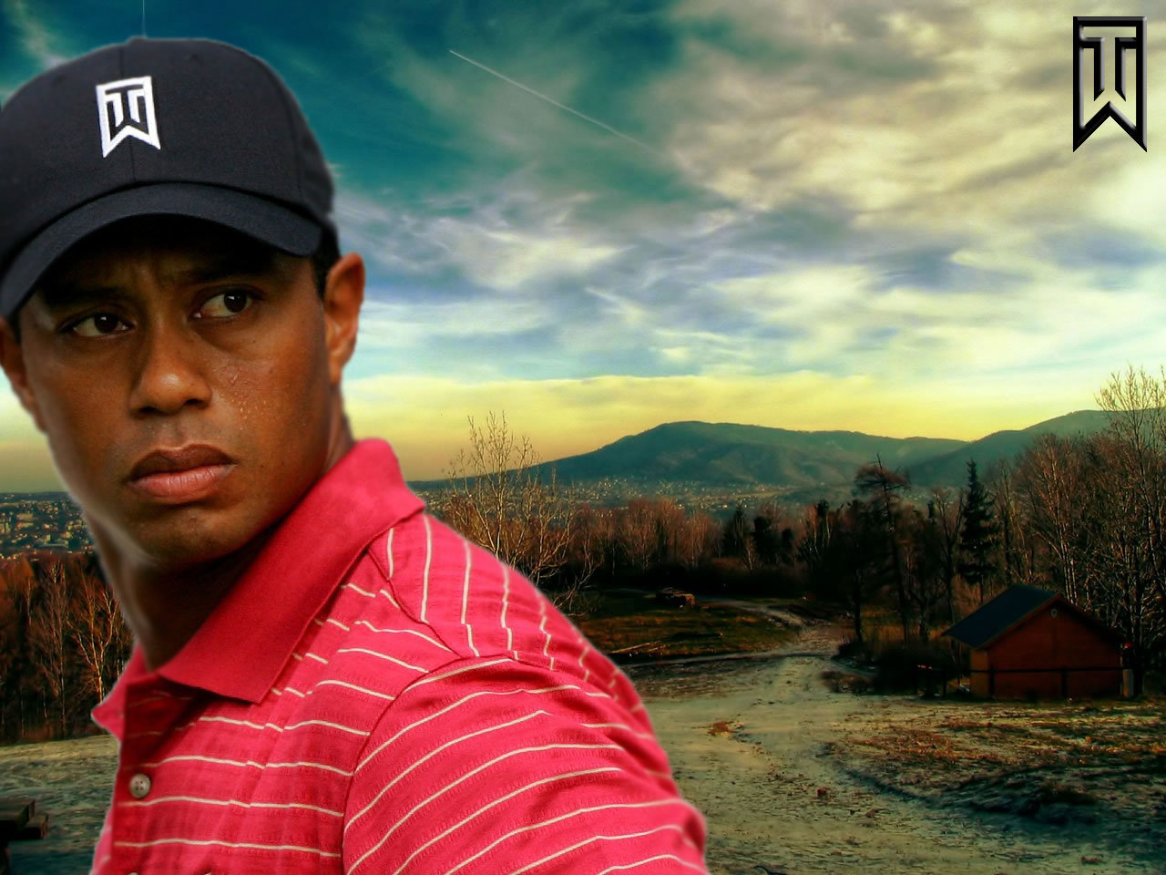 High resolution Tiger Woods hd 1280x960 wallpaper ID:8906 for computer