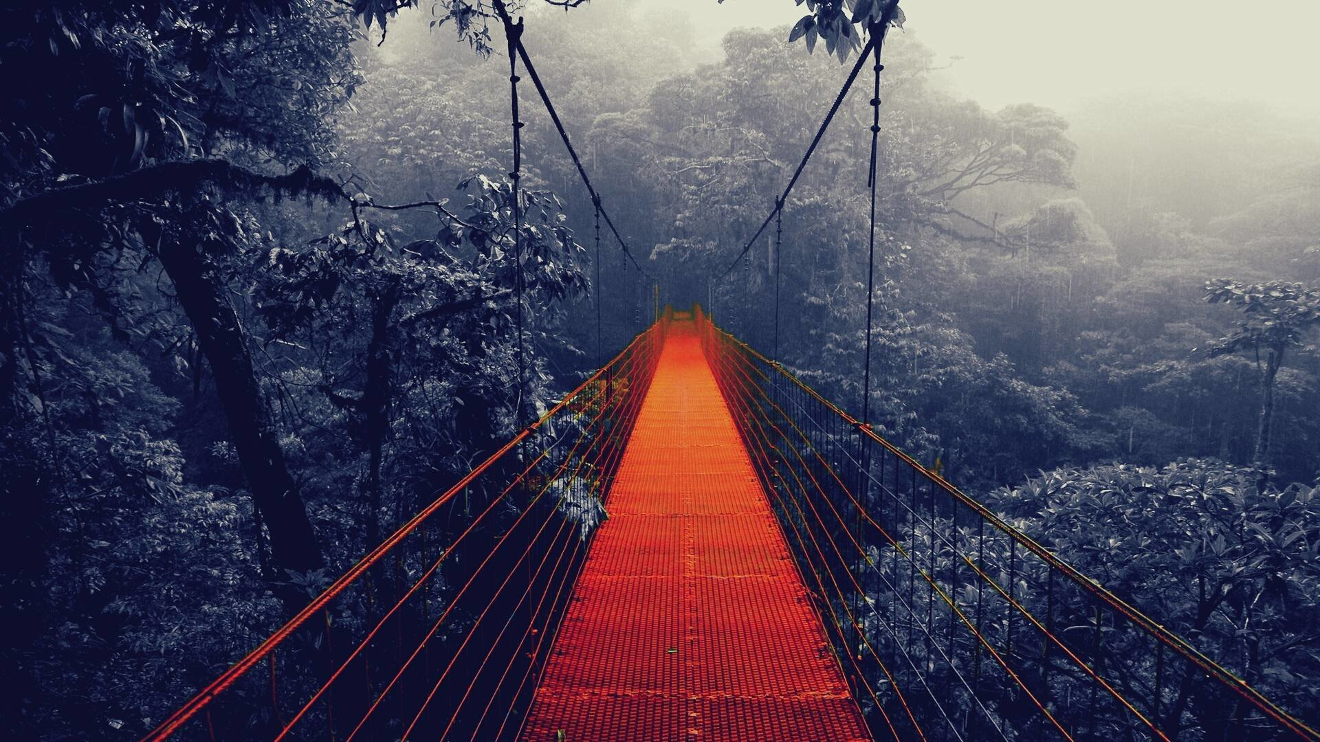 Best Bridge wallpaper ID:479745 for High Resolution 1080p PC