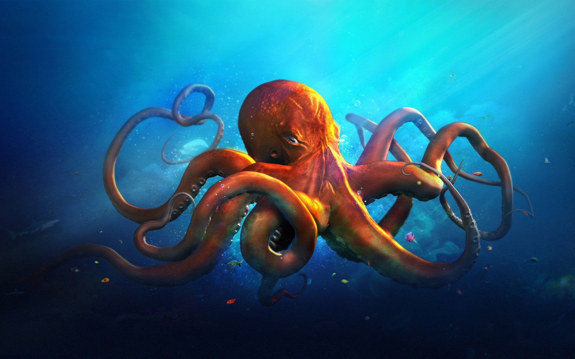 Download hd 1920x1200 Octopus PC wallpaper ID:350567 for free