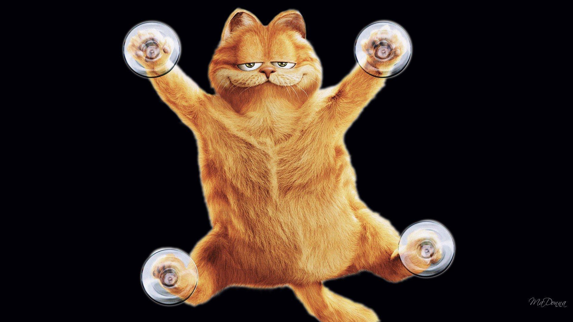 Garfield Wallpapers Hd For Desktop Backgrounds