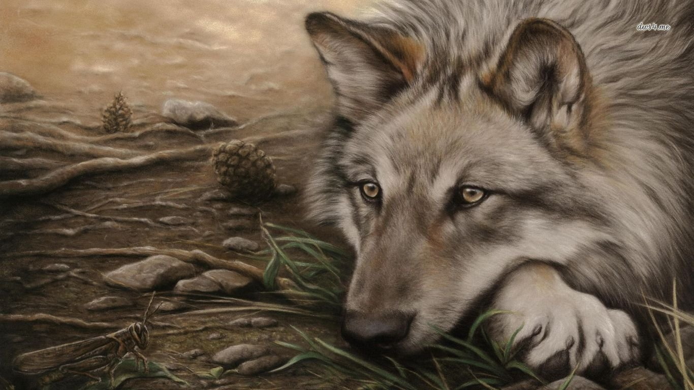 Best Wolf wallpaper ID:117709 for High Resolution laptop computer