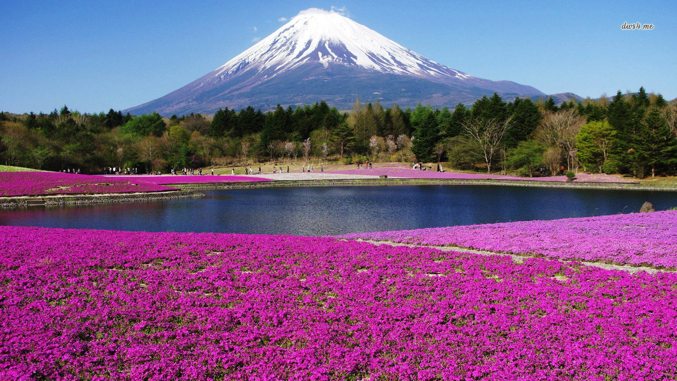 Download hd 1366x768 Mount Fuji desktop background ID:277733 for free